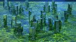 очередная страница истории на открытии Олимпийских игр - города, вырастающие в джунглях