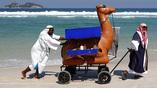 На пляжах в Рио можно встретить необычных продавцов еды