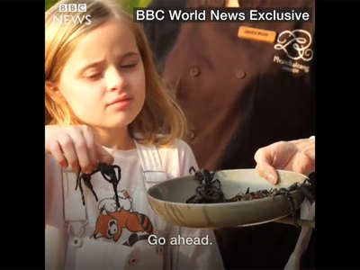 анджелина джоли накормила детей пауками видео