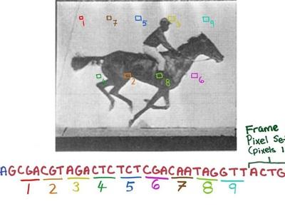 """Из ДНК бактерий создали """"жёсткий диск"""" и записали на него видео"""