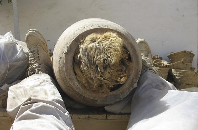 Невероятные находки археологов (Документальный