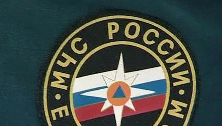 Спецборт МЧС доставил тяжелораненую девочку из Челябинска в Москву