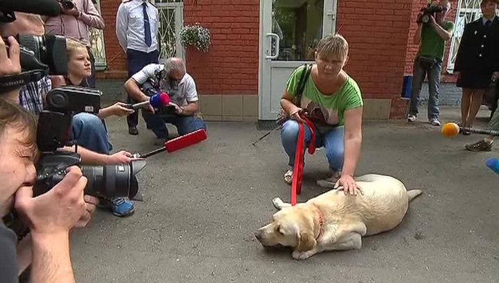 Сыщики нашли украденную у слепой певицы собаку