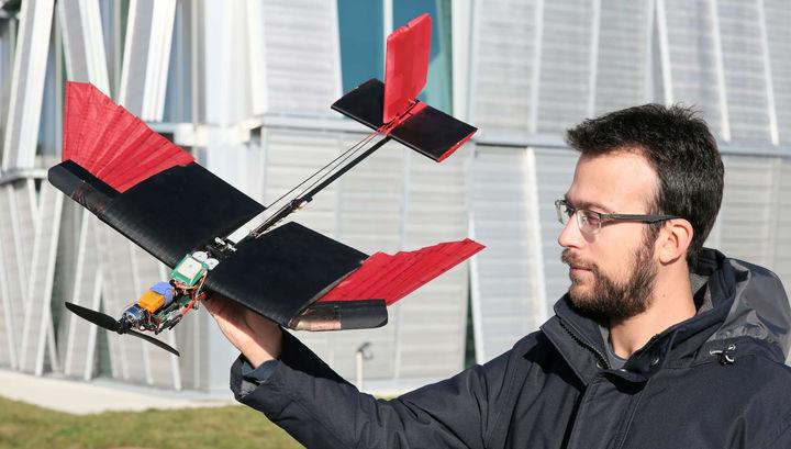 Новых дронов оснастили перьями для полёта даже при сильном ветре