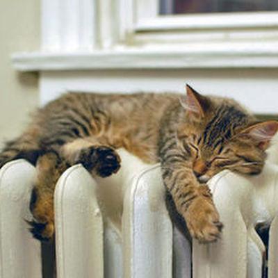 Отопление в Москве полностью отключат сегодня