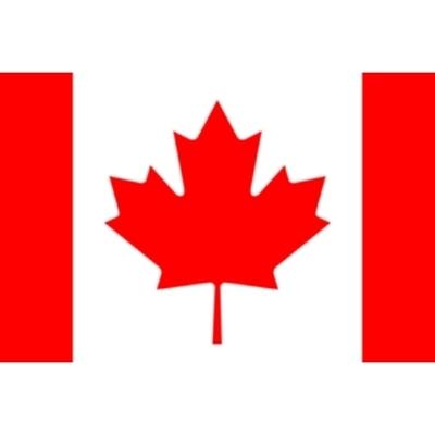 Режим чрезвычайного положения введен в канадской провинции Альберта, где бушуют лесные пожары
