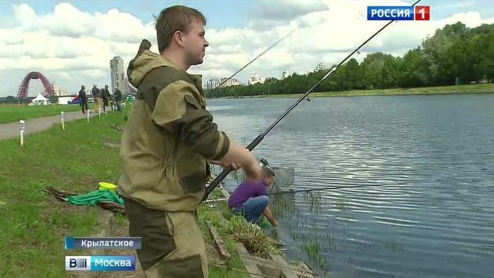рыбалка в крылатском на озерках