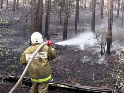 В Приамурье бушуют лесные пожары, в крае введен режим ЧС