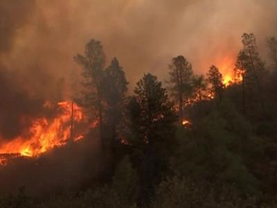 На западе США полторы тысячи человек эвакуированы из-за лесного пожара
