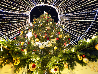 Госдума не поддержала предложение об отмене новогодних каникул