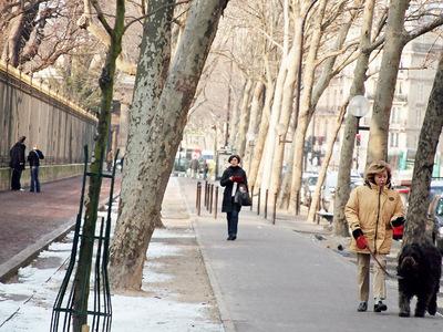 В Москве будет прохладно, облачно и снежно
