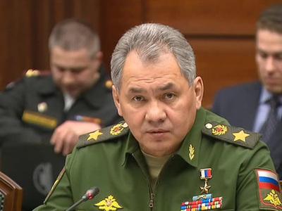Шойгу предложил создать коалицию по разминированию в Сирии