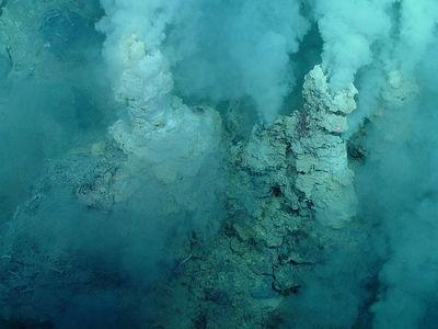 Последний общий предок всех живых организмов вдыхал водород из подводных вулканов