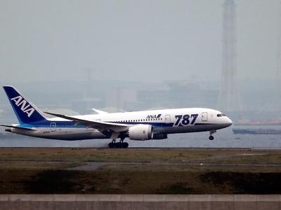 Японский Dreamliner с отказавшим двигателем сел в Братске