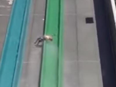 Ребенок вылетел с горки в аквапарке. Видео
