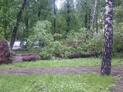 Москву и область ожидает новый ураган
