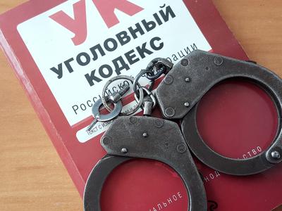 По факту смерти избитой красноярской школьницы заведено уголовное дело