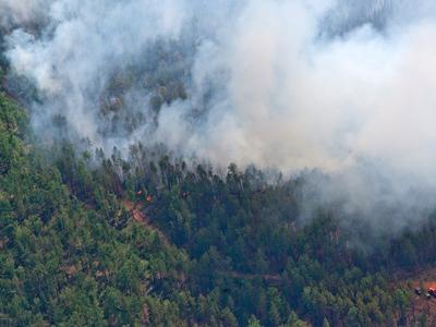 В Бурятии из-за лесных пожаров введен режим ЧС