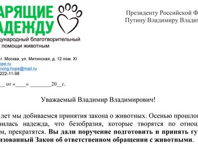 Остановить безнаказанность: зоозащитники и звезды написали открытое письмо президенту
