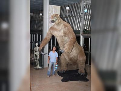 В Мексике нашли останки гигантского ленивца, жившего 10 000 лет назад