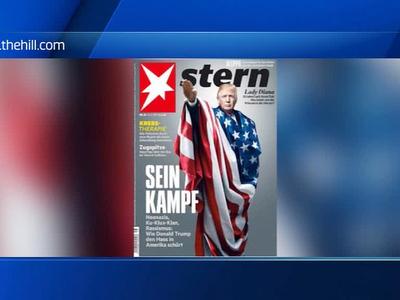 Закон Годвина в действии: западные СМИ начали намекать на склонность Трампа к нацизму