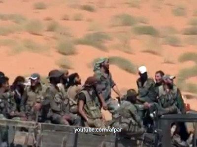 Предварительное расследование подтверждает причастность ИГИЛ к теракту на Синае