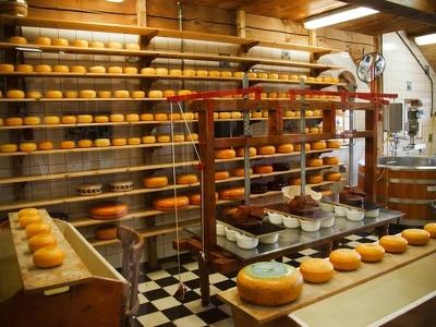 В Подмосковье построят 7 сыроваренных заводов