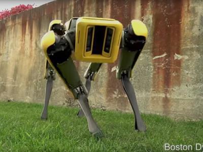 Роботы Boston Dynamics хорошеют под присмотром японцев