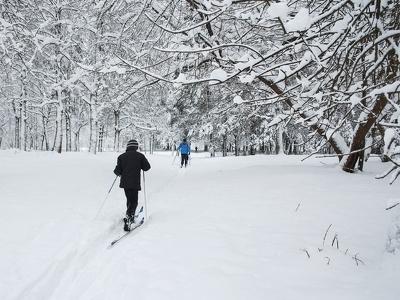 В московских парках появятся нетающие лыжни