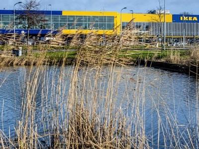 Еврокомиссия подозревает IKEA в уклонении от налогов