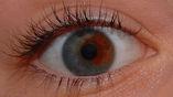 У людей с карими глазами под слоем коричневого пигмента скрывается голубая радужка