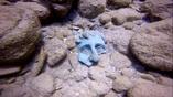 Фрагмент бронзовой статуи, обнаруженной в гавани Кесарии.