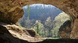 Выход из пещеры Виндия, где был обнаружен скелет неандертальца, из которого впервые удалось выделить ДНК.