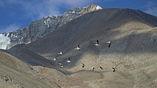Гималаи – это огромная складка, в которую сминает окраину Евразии  надвигающийся на нее Индийский субконтинент.