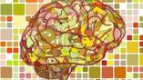 Для обработки информации мозг зачастую выбирает стратегию под названием постдикция, когда новый стимул воздействует на восприятие произошедшего ранее события.