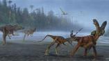 Стая Allosaurus jimmadseni атакует молодого зауропода.
