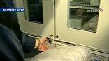 Привезенные останки Романовых до первой экспертизы будут храниться в холодильнике при плюс четырех градусах