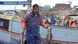 Жители крупнейшей датской провинции - Гренландии - хотят стать независимыми