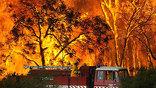 В штате  Виктория 24 района охвачены неконтролируемым огнем ї AP