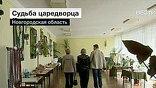 Перезахоронить предлагают в Александро-Невской лавре в Петербурге, но в Грузино уверены, что граф должен вернуться на Волхов. Хотя денег нет даже на местный краеведческий музей
