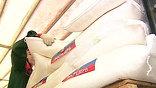 Третий самолет МЧС России доставил в Киргизию гуманитарную помощь. Всего тремя спецрейсами МЧС в Киргизию привезено почти 130 тонн помощи из фондов Росрезерва - 30 тонн сахара, около 54 тонн мясных и 15 тонн рыбных консервов, а также 15 тонн одеял