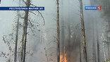 Лесные и торфяные пожары в России устойчиво идут на убыль