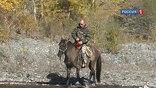 Защитить природные заповедники России, оставив их доступными. К этому Владимир Путин призвал сегодня участников совещания по развитию федеральной системы особо охраняемых природных территорий.