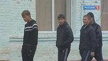 Подростки, подчинявшиеся Сергею Цапку, охраняли его пшеничные поля и выполняли другие поручения. За правонарушения их наказывали редко. Пострадавшие, часто под давлением, забирали заявления.