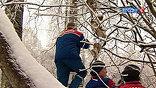 Москва и область приходят в себя после редкого погодного явления - ледяного дождя