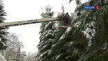 В 13 районах Подмосковья сегодня вновь нет электричества. Энергетики вырубают леса и устраняют новые обрывы проводов, поврежденных очередным снегопадом.