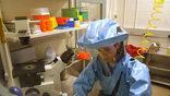 Вспышку лихорадки Эбола в Западной Африке признали самой сложной в истории