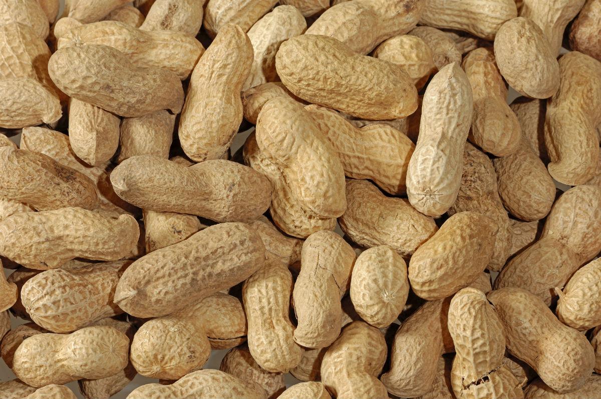 Китайцы продали в Россию пять тонн ядовитого арахиса