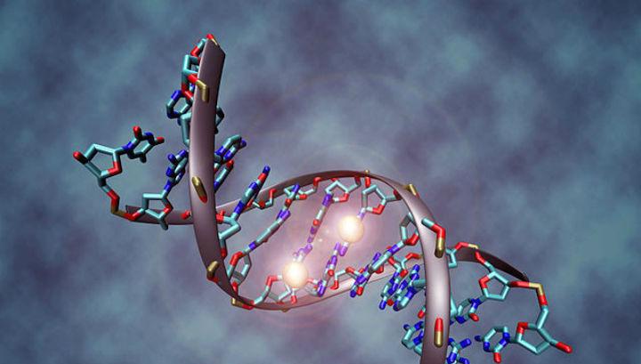 Дефекты РНК излечимы при помощи методик, основанных на клик-химии