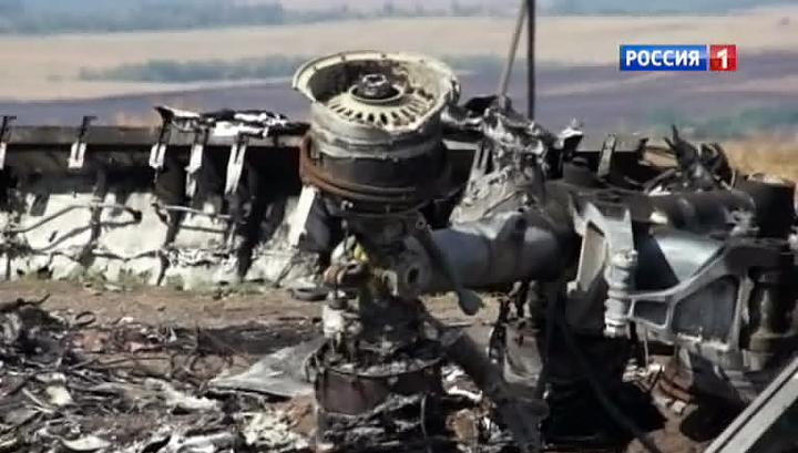 """СМИ: малайзийский """"Боинг"""" в Донбассе сбили украинские истребители"""